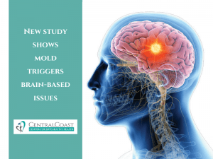 New Study Shows Mold Triggers Brain-Based Issues