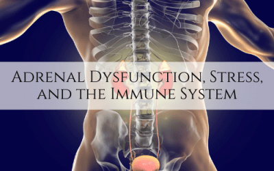 Adrenal Dysfunction, Stress, and the Immune System